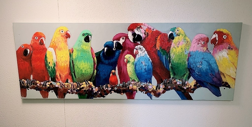 Papageien UG